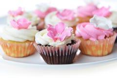 Small cakes Royalty Free Stock Photos