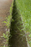 Small canal stock images