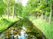 Small canal. A small canal in the old english park in Peterhof, Russia Stock Photo