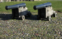Small Cannons. A cannon is any tubular piece of artillery that uses gunpowder or other usually explosive-based propellants to launch a projectile Royalty Free Stock Photography