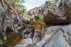 Small canyon. Canyon of a small river in the jungles of Thailand. Chiang Mai Stock Image