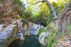 Small canyon at Troezen, Greece. Royalty Free Stock Photos