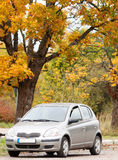 Small car in the autumn forest Royalty Free Stock Photo