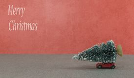small car getting the christmas tree Royalty Free Stock Photo
