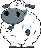 Small Cartoon Sheep Royalty Free Stock Photos