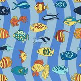 Aquarium fish on the blue waves pattern. Small cartoon style aquarium fish on the blue waves background pattern Stock Photos