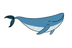 A small cartoon whale. Stock Images