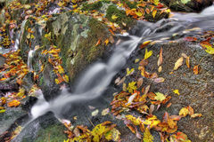 Small cascade Stock Images