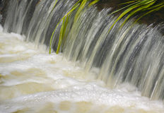 Small cascade close up Stock Images
