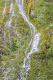 Small Cascade at Forest - Patagonia - Argentina Royalty Free Stock Photo