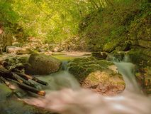 Small cascade immersed in the wild nature. Small waterfall of a watercourse of water surrounded by a forest with rocks in the foreground and dry and wet branches Stock Photos