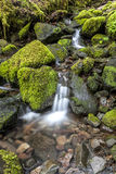 Small cascade through mossy rocks. Stock Photo
