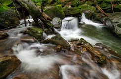 Small cascade on the river among bouders in forest. Small cascades on the forest river among huge boulders covered with moss. Fresch and clean nature environment Royalty Free Stock Images
