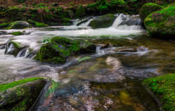 Small cascade on the stream among bouders. Small cascades on the forest stream among huge boulders covered with moss. dreamy Carpathian landscape Royalty Free Stock Image