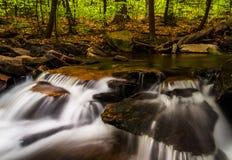 Small cascades along Glen Leigh, Ricketts Glen State Park Stock Photos