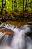Small cascades along Glen Leigh, Ricketts Glen State Park Royalty Free Stock Images