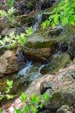 Small Cascading Mountain Stream. A small mountain cascading stream located in the Appalachian Mountains of Southwest Virginia, USA stock photos