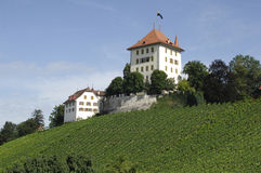 Small castle in central switzerland Royalty Free Stock Photo