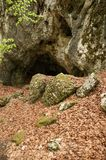 Small cave entrance in a forest Royalty Free Stock Photography