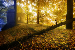 Small chapel. In autumn forest in morning mist stock images