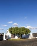 Small Chapel In Rural Area Of La Geria In Lanzarote Royalty Free Stock Photography