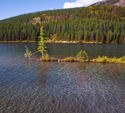 Small charming island in Canadian lake Royalty Free Stock Photo