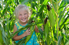 A small, cheerful girl among high, green corn Royalty Free Stock Photography