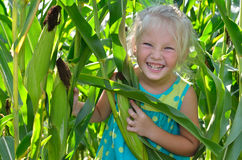 A small, cheerful girl among high, green corn Royalty Free Stock Images