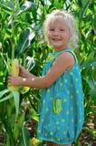 A small, cheerful girl among high, green corn Royalty Free Stock Photos