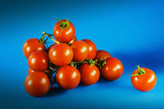 Tomatoes on blue Royalty Free Stock Photo