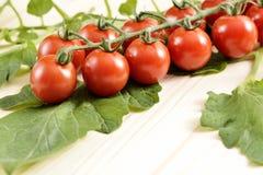 Small cherry Tomatoes Royalty Free Stock Photos