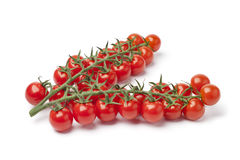 Small cherry tomatoes on a vine Stock Photos