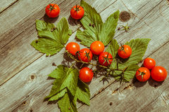 Small cherry tomatoes on wooden table Stock Photography