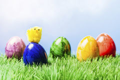 Small chicked on Painted easter egg, grass and blue background Stock Image