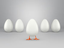Small chicken coming out of egg, isolated on white background Royalty Free Stock Image