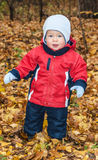 Small child on autumn walk Royalty Free Stock Images