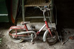Small child bicycle covered in spider webs. And dust left in the sshed of an abandoned property in Benabbio, Italy stock photo