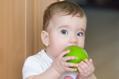 Small child with a big green apple. A child bites an apple with a surprised look royalty free stock image
