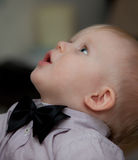 Small child with bow tie Royalty Free Stock Photo