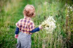 Small child boy with flowers royalty free stock images