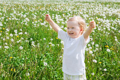 Small child the boy plays on a green meadow with dandelions Stock Photos