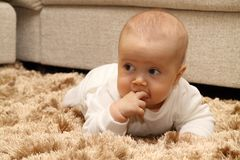 Small child on carpet. Small child crawling on carpet Stock Images