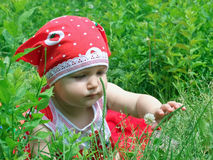 A small child explores the world Royalty Free Stock Image