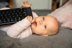 Small child, first steps on the internet, a newborn baby is holding a keyboard from the computer royalty free stock images