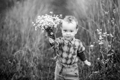 Small child with flowers stock image