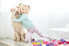 A small child is hugging his big dog. The concept of lifestyle,. Childhood, upbringing, family stock images