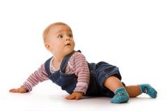 Small child in jeans. Studio shot over white Stock Image
