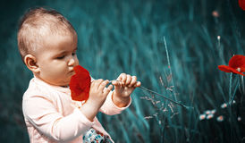 A small child playing in the field Stock Photo