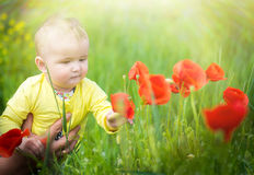 A small child playing in the field Stock Image