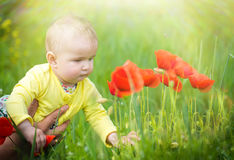 A small child playing in the field Royalty Free Stock Photos